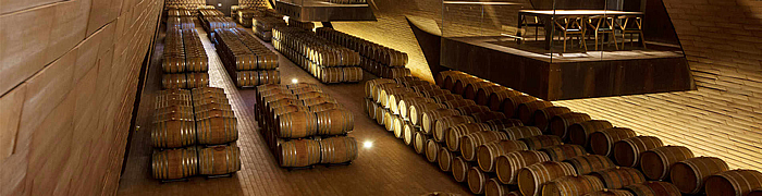 Chianti Wheelchair Tuscany Wine Tasting Accessible Tours