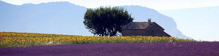 provence wheelchair accessible tours