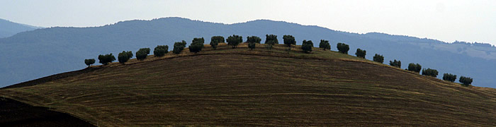 pienza wheelchair val d'orcia accessible tours
