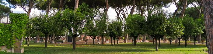 Orange Garden Wheelchair Rome Accessible Tours