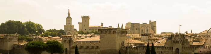 Avignon Wheelchair Provence Accessible Tours