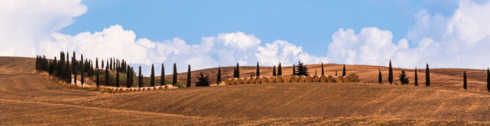 Val D'Orcia Wheelchair Tuscany Accessible Tours